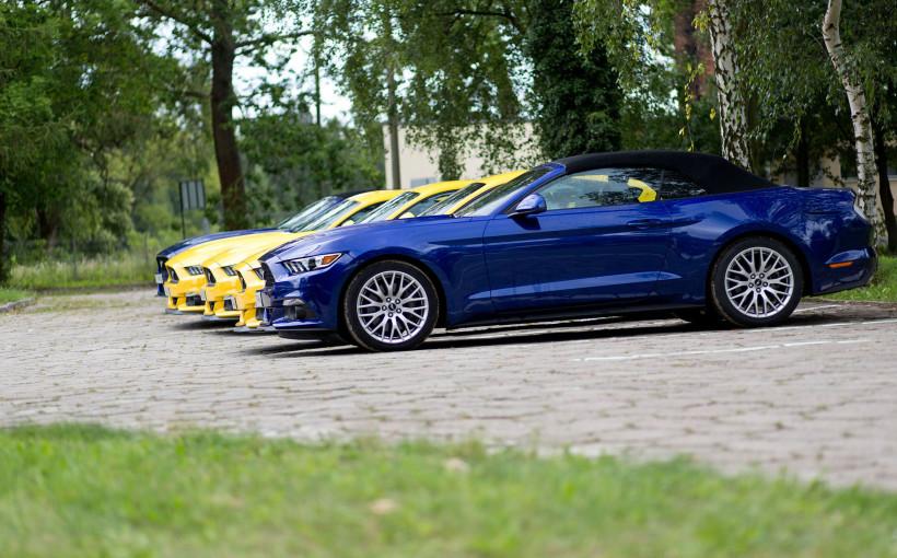 Ford Mustang 2.3 EcoBoost/5.0 V8 | fot. Maciej Polikowski
